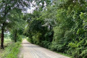 Coppage Road Homesite and Investment Opportunity - Lowndes County, GA