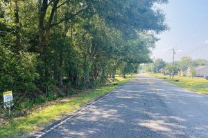 Ozark Homesite and Development Tract - Dale County, AL