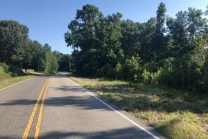 Bone Camp Road Homesite, Timber, Hunting, & Recreation - Tuscaloosa County, AL