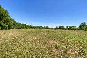 Faulkner Road Homesite and Mini-Farm - Houston County, AL