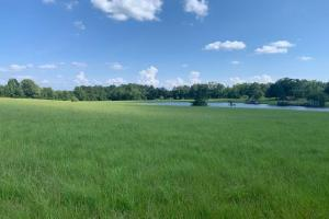 Florence Estate Property  in Rankin County, MS (8 of 8)