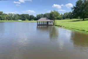 Florence Estate Property  in Rankin County, MS (1 of 8)