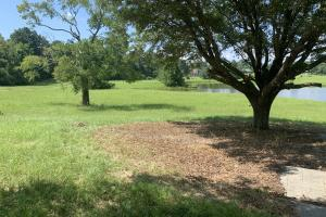 Florence Estate Property  in Rankin County, MS (4 of 8)