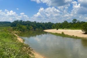 Cahaba River Corn Fields and Timber  - Perry County, AL