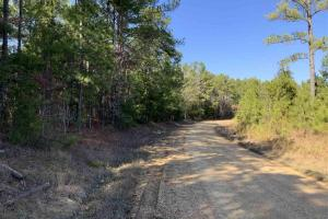 Good Hunting Tract or Timber Investment - Chickasaw County, MS