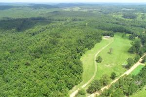 North Perry Timber Investment - Perry County, AL