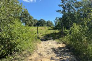 Bluett Tanner Recreation and Hunting Tract in Mobile County, AL (9 of 9)