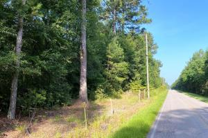 T-Smith Road Residential and Timber Tract - Forrest County, MS