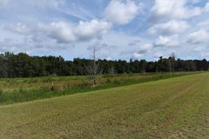 Citra Airstrip Retreat  in Marion County, FL (20 of 33)
