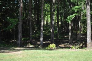 Northside Home Site - Lot 1 - Tuscaloosa County, AL