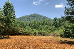 51-Acre Eastatoee Valley Recreational Tract - Pickens County, SC