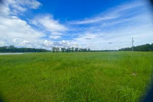 Newbern Horse Pasture or Wedding Venue tract