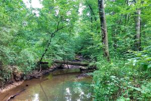 Harpersville Homesite and Recreation - Shelby County, AL