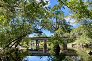 Alapaha River Hunting and Recreational Tract - Lowndes County, GA