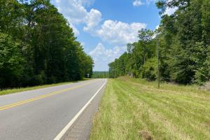 Highway 31 King Cemetery Road Tract - Conecuh County, AL