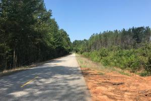 Springhill Church Road Tract - Tuscaloosa County, AL