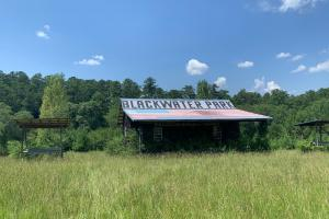 Jasper Commercial and Development Tract - Walker County, AL