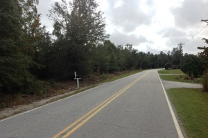 Affordable Nichols Homesite - Marion County SC