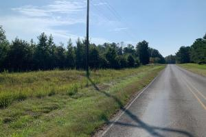 Investment Timberland With Deer and Small Game Hunting Near Mississippi State University - Oktibbeha County, MS