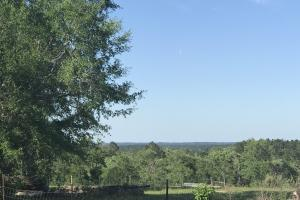 Beautiful Views From Multiple areas Around The Entire Ranch! (6 of 24)