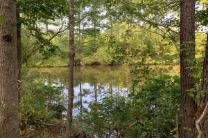 Hunting, Investment & Recreational Property Near Starkville, MS - Oktibbeha County, MS