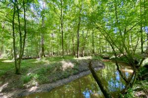 Canty Road Troy Highway Timber & Hunting Investment - Montgomery County, AL