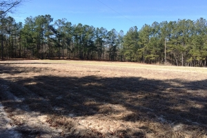 sc land for sale, estate land for sale, acreage for sale (13 of 23)