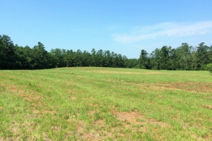 Large Acreage Estate in Aiken - Aiken County SC