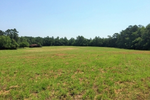 sc land for sale, estate land for sale, acreage for sale (5 of 23)