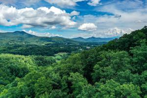 Wooded Mountain Homesite acreage with Well and Utilities - Buncombe County, NC