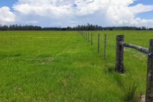 Zolfo Springs Farm and Ranch Land in Hardee County, FL (33 of 34)