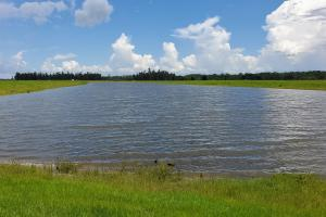 Zolfo Springs Farm and Ranch Land in Hardee County, FL (13 of 34)