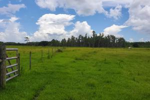 Zolfo Springs Farm and Ranch Land - Hardee County, FL