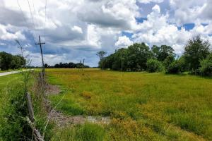 Zolfo Springs Farm and Ranch Land in Hardee County, FL (34 of 34)