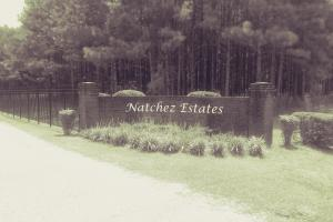 Natchez Hwy Wilmer Tract in Mobile County, AL (2 of 4)