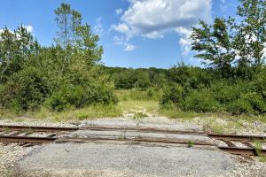 Ga Hwy 37 E Recreational Clearcut, Homesite, Income Producing Opportunity - Colquitt County, GA