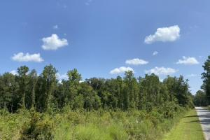 Hickory Grove Homesite or Small Business Location - Lowndes County, GA