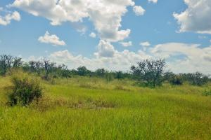 Lake Buffum Property - Polk County, FL
