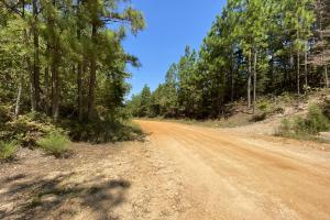 Walnut Creek Timber & Recreational Tract - Chilton County, AL