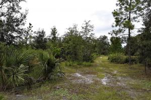 Interlachen Ranch, Recreation and Investment Tract  in Putnam County, FL (18 of 42)