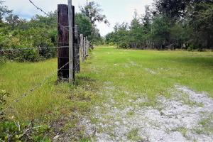 Interlachen Ranch, Recreation and Investment Tract  in Putnam County, FL (19 of 42)