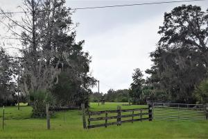 Interlachen Ranch, Recreation and Investment Tract  in Putnam County, FL (30 of 42)