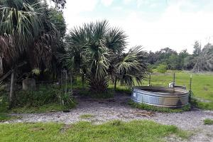 Interlachen Ranch, Recreation and Investment Tract  in Putnam County, FL (22 of 42)