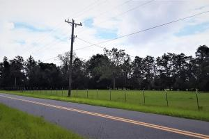 Interlachen Ranch, Recreation and Investment Tract  in Putnam County, FL (15 of 42)