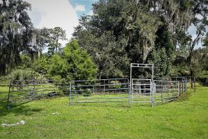 Interlachen Ranch, Recreation and Investment Tract  in Putnam County, FL (24 of 42)