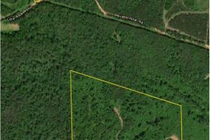 Little Rock Road Timber, Hunting, and Homesite - Perry County, AL
