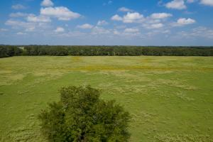 22 +/- acres in Henderson County, Open Pasture Bordered with Timber