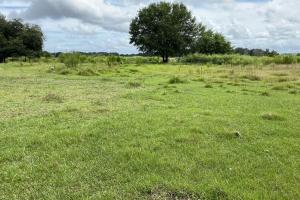 Multiple Lots & a 10 Acre Pasture - Polk County, FL