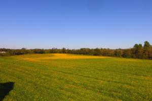 Fayetteville Farm and Hunting Land  - Sampson County, NC