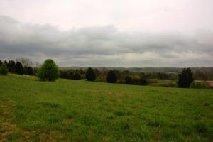 Homesite or Mini Farm - McMinn County TN